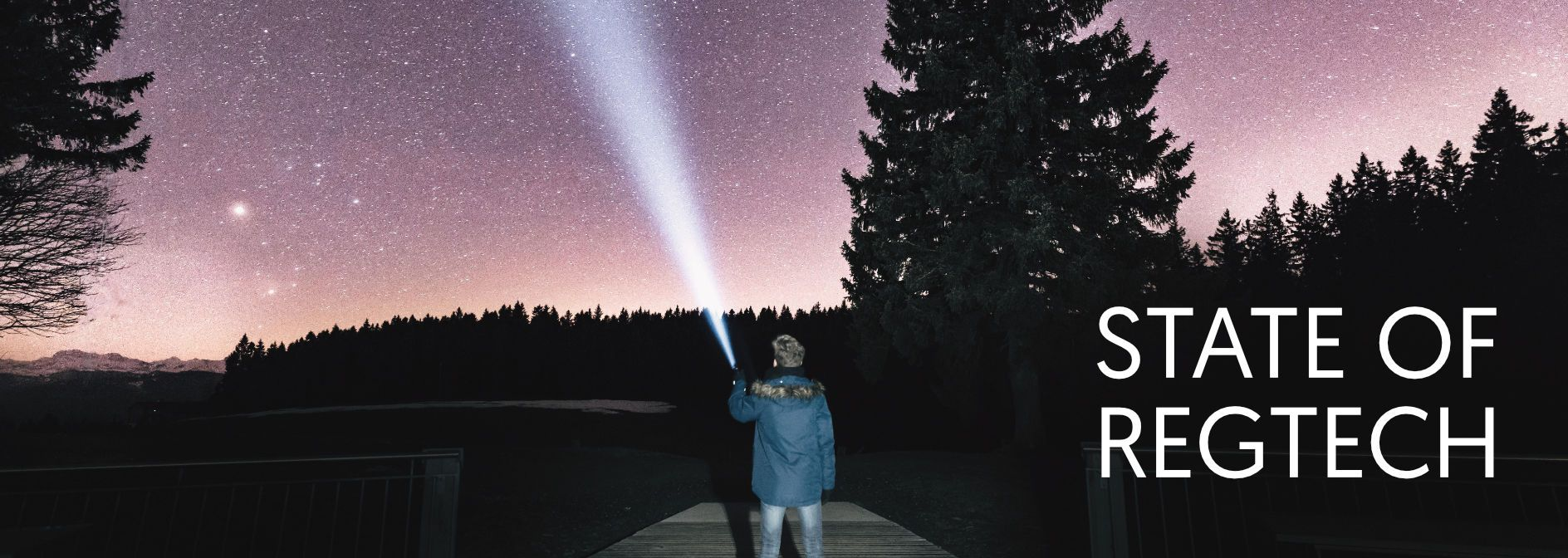 man standing in nature with a flash light pointing at the sky